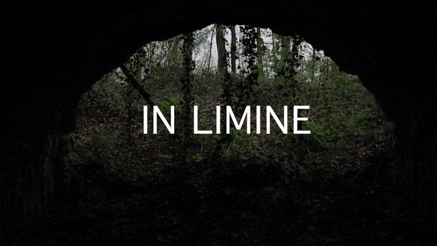 in limine